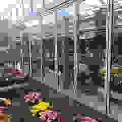 من Schmidinger Wintergärten, Fenster & Verglasungen حداثي زجاج