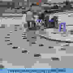 de Công ty Đài phun nước TDV Việt Nam Moderno