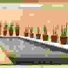 de RAWI Arquitetura + Design Moderno Piedra