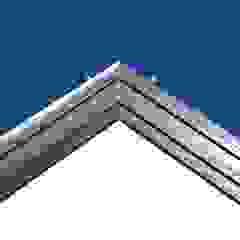 RiceHouse Modern walls & floors