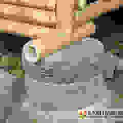 GUADUA Y BAMBU COLOMBIA Wooden houses