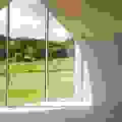 Green Living Ltd Modern Windows and Doors Solid Wood