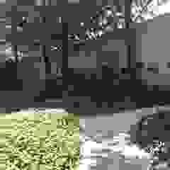 Verde Lavanda Front yard