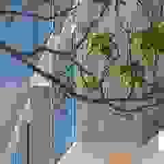 Banema S.A. Casas multifamiliares Derivados de madera Acabado en madera