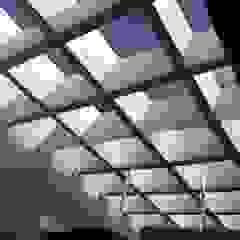 Merkalum Flat roof Glass Metallic/Silver
