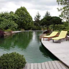 بركة مائية تنفيذ Kirchner Garten & Teich GmbH