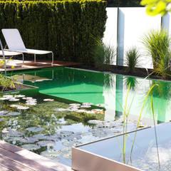 مسبح حديقة تنفيذ Balena GmbH