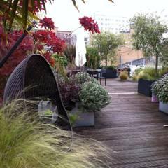 Jardines de estilo  por Cool Gardens Landscaping,