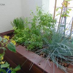 donica z ziołami: styl , w kategorii Taras zaprojektowany przez ARCHITEKTONIA Studio Architektury Krajobrazu Agnieszka Szamocka -Niemas
