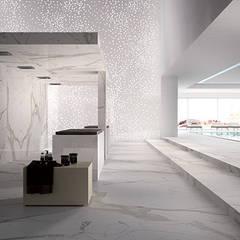 Maxfine Calacatta :  Walls by Tile Supply Solutions Ltd