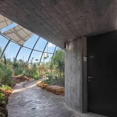 Botanischer Garten, Zürich:  Flur & Diele von HPP Architekten GmbH