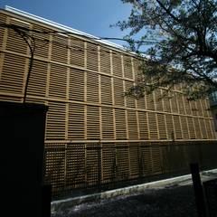 ロードサイド: Yoshiharu Shimazaki Architect Studio,INCが手掛けた学校です。