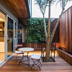 Albizia House:  Terrace by Metropole Architects - South Africa