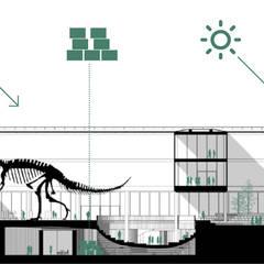 Section 3: Musées de style  par NAS Architecture