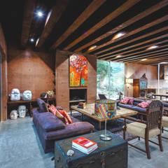 Casa Narigua : Salas de estilo  por P+0 Arquitectura
