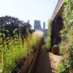 Complete terras make-over:  Terras door House of Green, Modern