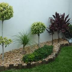 DISEÑOS DE JARDINES Jardines modernos de VIVERO CUMBRES ELITE Moderno