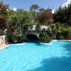 Paradise Garden Hotel  – Havuzlar:  tarz Havuz