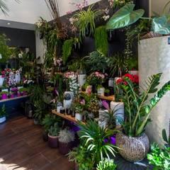 Fleuriste à montpellier: Espaces commerciaux de style  par WM
