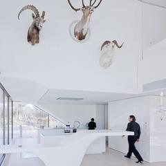 Haus am Weinberg: minimalistische Woonkamer door UNStudio