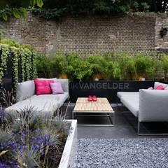 Daktuin Dordrecht: moderne Tuin door ERIK VAN GELDER | Devoted to Garden Design