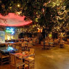 Paker Mimarlık – RAINFOREST CAFE ISTINYE PARK:  tarz Yeme & İçme