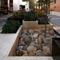Jardines de estilo  por Forma Taller,