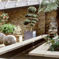 Well Walk:  Garden by KSR Architects