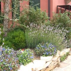Abitazione privata: Giardino in stile  di giardini di lucrezia