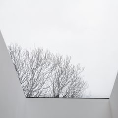 Lysia Street: minimalistic Conservatory by S&Y Architects