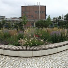 SKW Campusgarten Lutherstadt Wittenberg :  Schulen von GFSL clausen landschaftsarchitekten gruen fuer stadt + leben