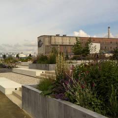 Sitzstufenanlage mit Hochbeeten:  Schulen von GFSL clausen landschaftsarchitekten gruen fuer stadt + leben