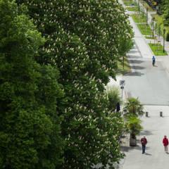 Kurpromenade II:  Krankenhäuser von GFSL clausen landschaftsarchitekten gruen fuer stadt + leben