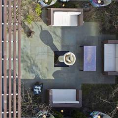 Herenhuis IJburg Steigereiland, blik op ommuurde tuin: tropische Tuin door Florian Eckardt - architectinamsterdam