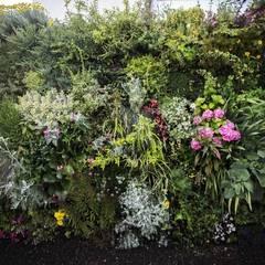Jardín Vertical/Vertical Garden: Jardines de estilo  de thesustainableproject