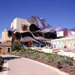 Hoteles de estilo  por ARENISCAS STONE, Moderno