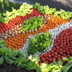 нашествие овощей:): Сады в . Автор – TOPOS,