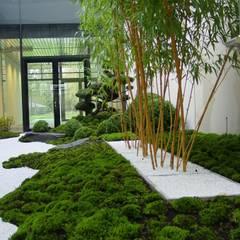 Kokeniwa Japanische Gartengestaltungが手掛けた学校