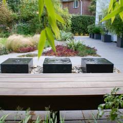 Contemporary Modern Family Garden:  Garden by Rosemary Coldstream Garden Design Limited