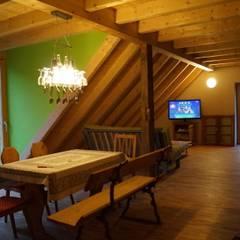 Dachgeschoss-Ausbau:  Multimedia-Raum von Architekturbüro Löser-Schwarzott