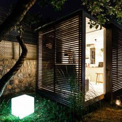 Canna : styl , w kategorii Ogród zaprojektowany przez Grupa Bio3