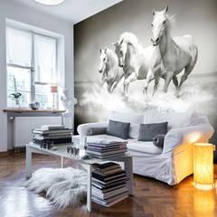 Beautiful Equestrian Wall Murals:  Walls by Wallsauce.com
