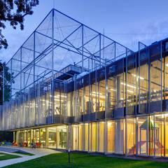 FALA PARK Centrum Spotrów i Rekreacji | WOLSZTYN: styl , w kategorii Stadiony zaprojektowany przez PL.architekci