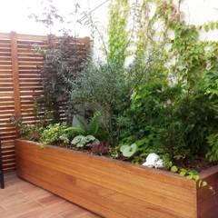 Ogród na dachu z nutką orientu Azjatycki ogród od GREENERIA Azjatycki