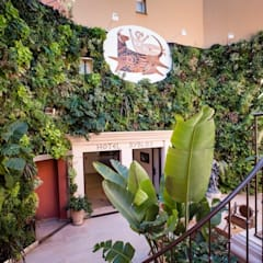 entree de l hotel : Hôtels de style  par JUNGLE ART