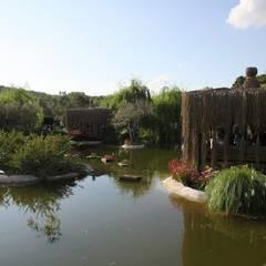 Sihirli Peyzaj – sihirli peyzaj bahçe tasarım proje uygulamaları:  tarz Yeme & İçme