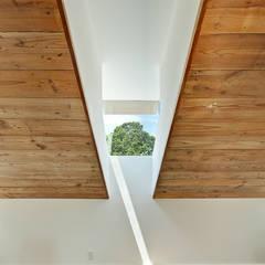 Windows by Hugh Jefferson Randolph Architects, Modern