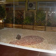 espacio zen-: Jardines japoneses de estilo  de contacto36