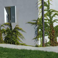 vista casa adiacente la cantina: Cantina in stile  di GRISDAINESE