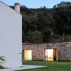vista casa-cantina: Cantina in stile  di GRISDAINESE